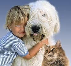 allergie_bambini_cani_e_gatti_non_aumentano_rischio