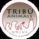 Tribù Animale Onlus – Associazione di aiuto e protezione animale Verona